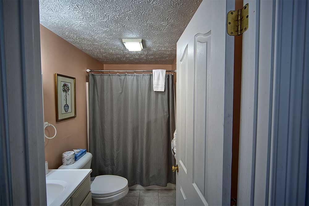 Bathroom with tan walls and grey shower curtain